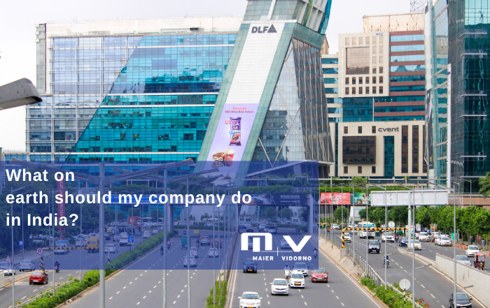 What on earth should my company do in India - understand the Indian market by Maier Vidorno